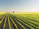 吉林省聚焦三大體系建設推進農業現代化(圖)