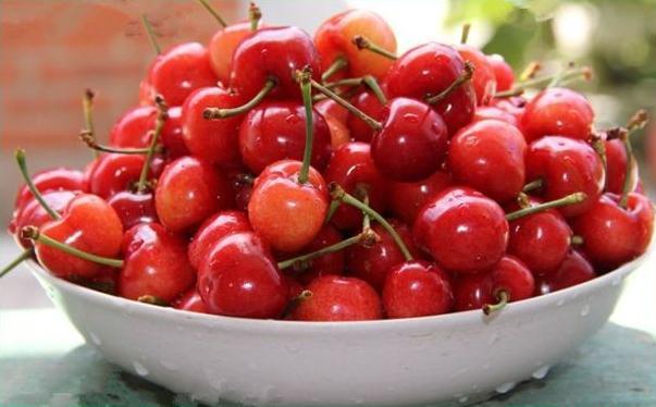 樱桃是什么季节的水果?樱桃什么时候成熟?[图]