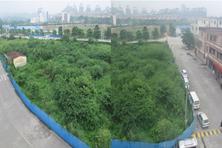土地流拍:中山东区三溪村商业地584.5万/亩无人问津