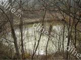 湖北當陽市廟前鎮60畝山林30萬出售