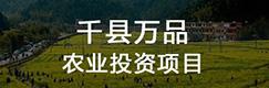 千县万品农业投资项目