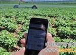 """莲都""""智慧农业""""一台手机控制500亩土地"""