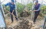 河北广阳:循环农业打造绿色发展新模式(图)
