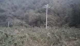 河南三门峡卢氏县80亩耕地 旱地 山地出租 租金:5.200万元