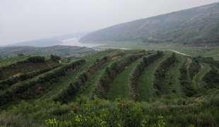 陜西延安黃龍縣280畝園地 耕地 山地轉讓