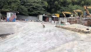 广东广州天河区凤凰街道渔沙坦社区1.5亩山地出租 租金:12万元